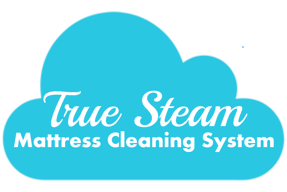Ideal Clean – Just Gone Systems – Ideal Clean eliminates